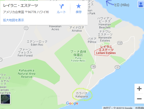2019-02-22 (1).png